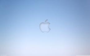 Картинка серый, фон, голубой, apple, яблоко, минимализм, компьютеры