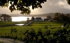 Картинка дорога, поле, пейзаж, дом, река, утро
