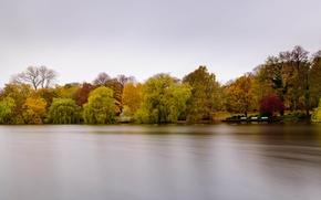 Картинка trees, park, lake
