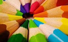 Обои цвет, карандаши, по кругу