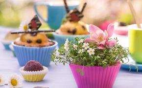 Картинка цветы, кексы, формочки, маффины