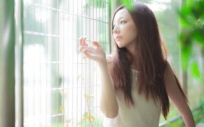 Картинка девушка, свет, настроение, азиатка