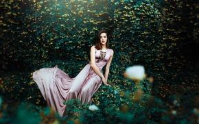 Картинка лето, взгляд, девушка, стиль, платье, красотка