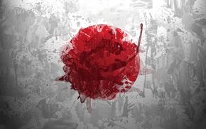 Обои флаг, солнце, japan, круг, брызги