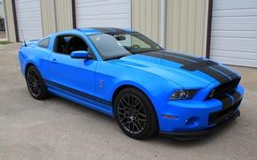 Картинка Mustang, Shelby, GT500, Cobra, SVT