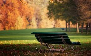 Обои парк, природа, скамейка, день, Wallpapers, обои, листья, настроение, лавочка, солнышко, осень
