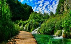 Картинка лес, пейзаж, природа, река, мостик