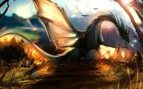Обои дракон, день, лучи, крылья, арт