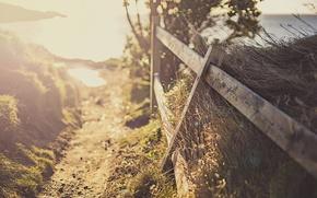 Картинка свет, забор, утро