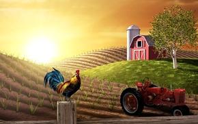 Картинка поле, коллаж, трактор, ферма, петух