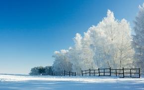 Картинка зима, снег, деревья, забор