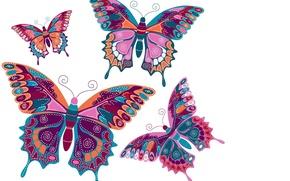 Картинка бабочки, фон, вектор