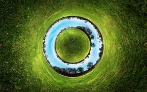 Картинка трава, земля, фотографии