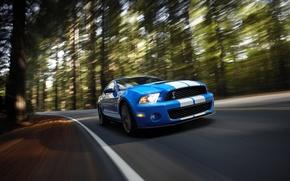 Обои Shelby, GT500, скорость, мускул-кар