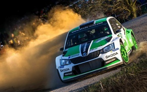 Картинка Пыль, Поворот, Rally, Ралли, Skoda, Fabia, WRC2