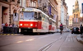Картинка дорога, деревья, природа, город, река, вид, здания, дома, Чехия, вышка, красиво, панорама, трамвай, мосты, Prague, ...