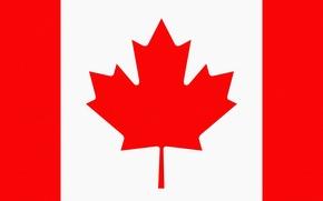 Обои Лист, Флаг, Канада, Герб, Canada, Photoshop