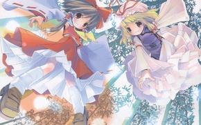 Картинка полет, магия, бамбук, бант, touhou, art, оборки, pop, yakumo yukari, hakurei reimu, большие глаза