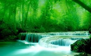 Обои листва, вода, зелень, Река, деревья, камни