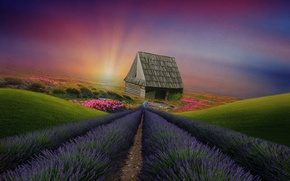 Картинка пейзаж, цветы, дом, холмы, растительность, луга