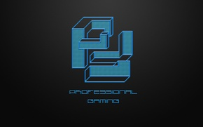 Картинка wallpaper, logo, game, minimalism, professional, gaming, dota2, pfgaming, pfg, steamo