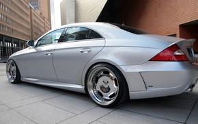 Картинка Mercedes-Benz, wald, cls