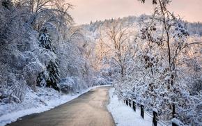 Картинка snow, зима, дорога, white, path, sunset, trees, sky, лес, cool, forest, снег, природа, деревья, nice, ...