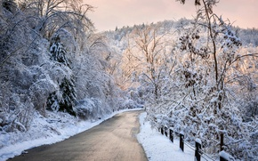 Картинка зима, дорога, лес, небо, снег, деревья, пейзаж, природа, white, forest, road, sky, trees, nature, sunset, ...