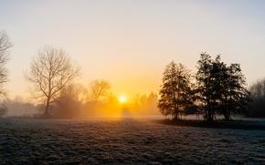 Обои туман, утро, поле, осень