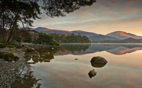 Картинка лес, озеро, отражение, холмы, утро