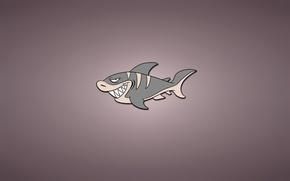 Картинка минимализм, рыба, акула, светлый фон, shark, fish