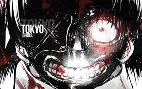 Картинка ужас, парень, mask, токийский гуль, tokyo ghoul, kaneki ken