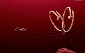Картинка стиль, золото, украшение, сережки, бренд, diamond, Cartier
