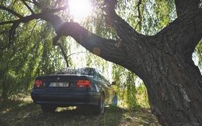 Картинка авто, BMW, e39