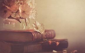Картинка цветы, стиль, книги, банка
