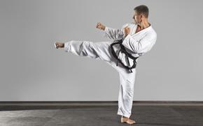 Картинка old, man, pose, kenpo karate