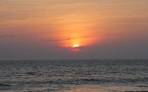 Картинка солнце, закат, птицы, природа, океан, Индия