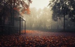 Картинка осень, спорт, ворота