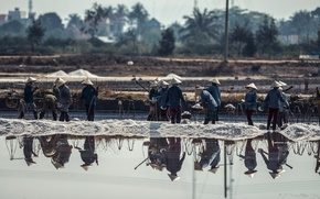 Картинка water, asia, people, Vietnam, workers, SALT FIELD WORKERS VIETNAM