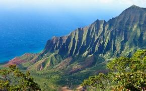 Картинка море, зелень, лес, трава, вода, солнце, свет, деревья, пейзаж, горы, природа, океан, высота, grass, forest, …