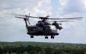 Картинка лес, полёт, вертолёт