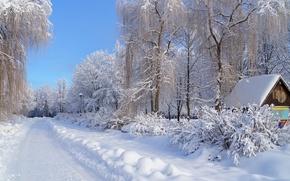 Обои зима, снег, дорога, деревья, иней, дом