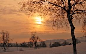 зима,деревья,закат обои