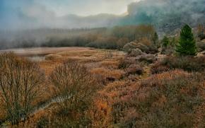 Картинка осень, пейзаж, туман, залив, ущелье, Испания, лагуна, мрачно, Куэнка, или хз вообще что это?, депрессивно