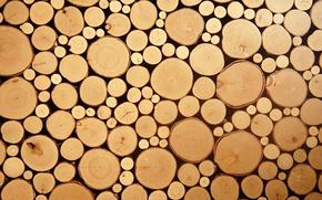 Картинка wood, circles, cut logs