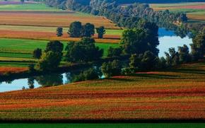 Картинка природа, река, поля