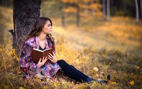 Обои осень, девушка, задумчивость, дерево, книга