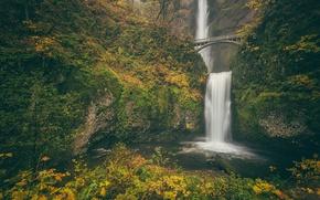 Обои осень, Columbia River Gorge, Benson Bridge, скала, мост Бенсона, Multnomah falls, Oregon, водопад Малтнома, Ущелье ...
