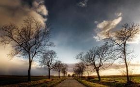 Обои дорога, деревья, небо