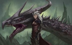 Обои голова, арт, дракон, Flemeth, Флемет, ведьма, Dragon Age, скалы